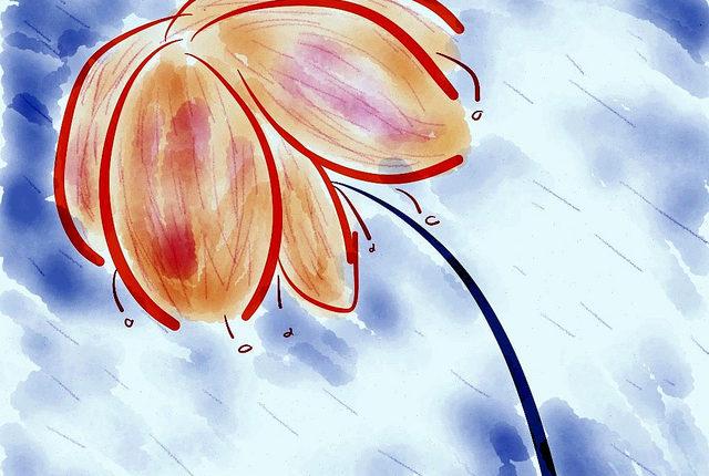 floarea-imaginara.jpg