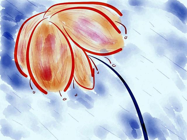 floarea imaginara